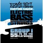 Ernie Ball 2802 Flatwound Bass Guitar Strings - Group I Firm 55-110